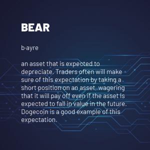 Bear 300x300