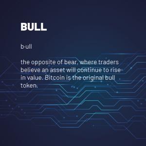 Bull 300x300