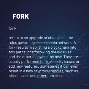 Fork 300x300